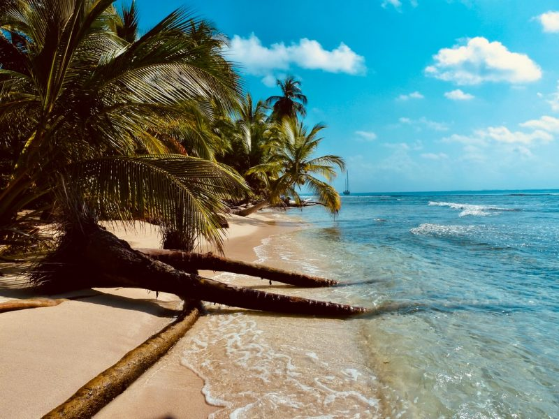 Why Select Goa for Your Subsequent Yoga Retreat